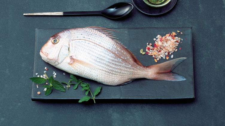 Guter Fisch trägt heute Zertifikat