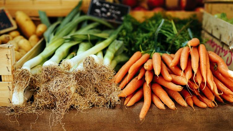 15 Fakten zur Nachhaltigkeit in der Gastronomie