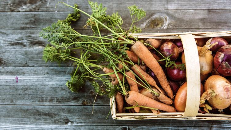 Für immer Priorität: Lebensmittelabfälle verringern