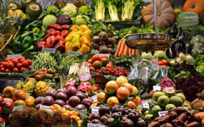 Essen retten, Gewinne machen