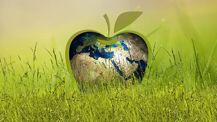 Ist Nachhaltigkeit das neue Bio?