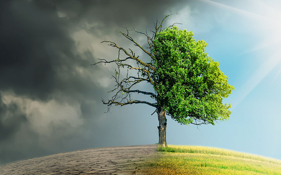 Nachhaltigkeit in Covid-19-Zeiten: wichtiger denn je!